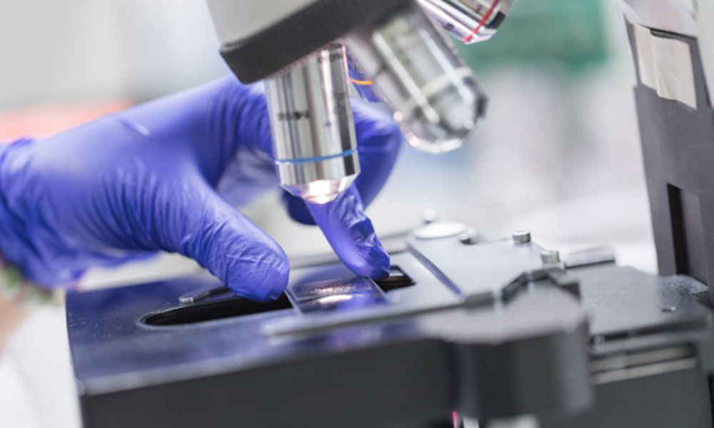 Edulab servicios Patologia analisis
